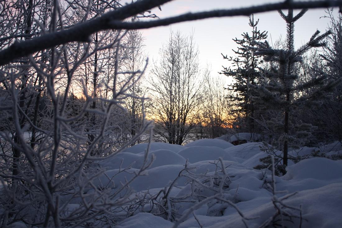 Familia-Cortejoso-Sanchez-Arctic-Circle-Fin-de-Ano-2015-03